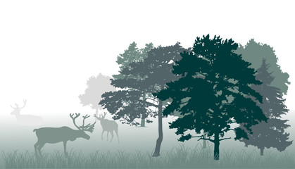 deers in forest green illustration