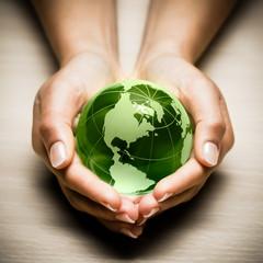 écologie mains