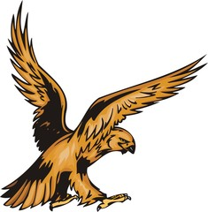 The eagle with yellow plumage waves wings.
