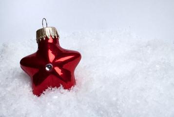 Roter Weihnachtsstern im Schnee