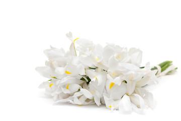 floral arrangement - white flowers