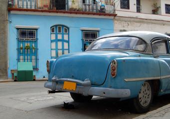 Türaufkleber Autos aus Kuba kitten & car