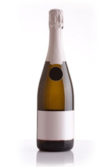 Champagne bottle isolated against a white background