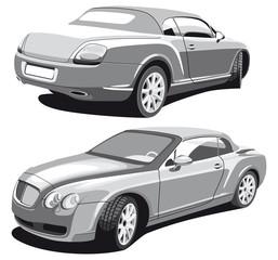 luxury car_grayscale