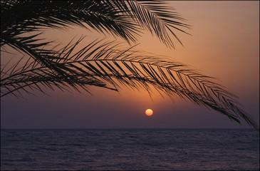 wschód słońca 3