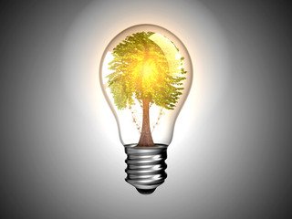 Lightbulb with tree inside it and light