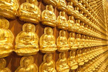 Ten thousand golden Buddha statue