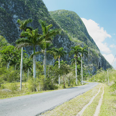 Vinales Valley, Pinar del Río Province, Cuba