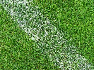 Fußball Rasen Nahaufnahme - Soccer Pitch Detail