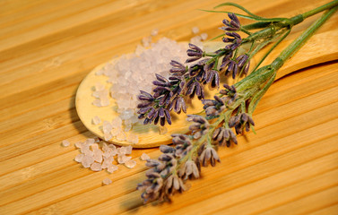 Lavendel, Badesalz, Wellness