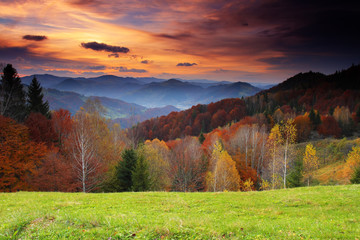Wall Mural - morning in mountains
