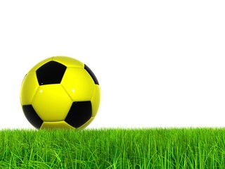 High resolution 3D soccer ball in green grass