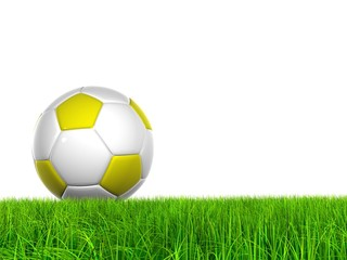 High resolution soccer ball in grass isolated