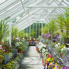Fototapeta greenhouse, Birr Castle Gardens, County Offaly, Ireland obraz