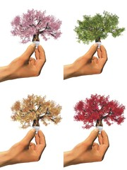 High resolution conceptual trees as lamps held in hand