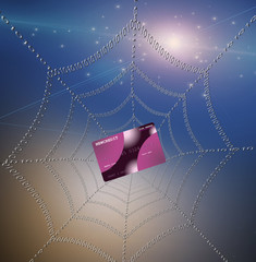 High Resolution Credit card caught in web