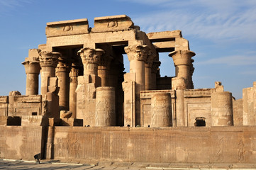 Руины храма в Египте .