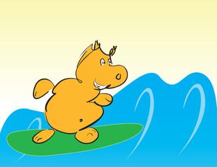 Hippo on surfboard