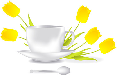 Cup + tulips