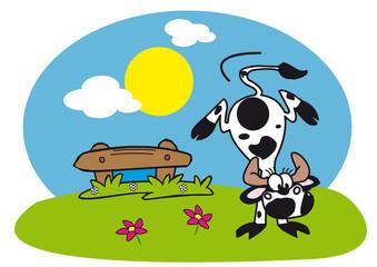 vache danser prairie paysage