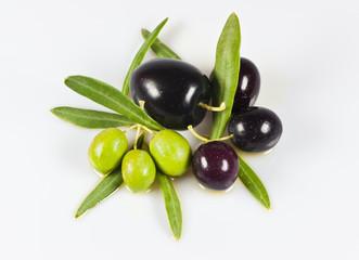 Olivenarten isoliert auf weissem Hintergrund