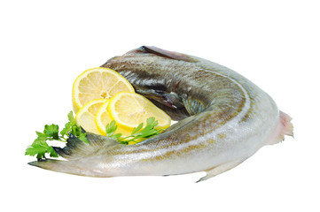 Raw fish, decorated with lemon and herbs