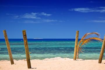 Sticks on Island beach