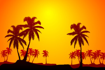 Tropic sunrise