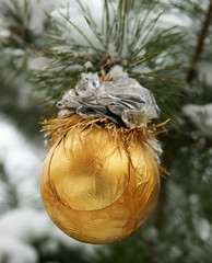 New Year's sphere on a snow-covered fur-tree
