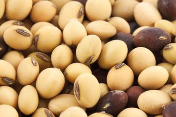Dry soy