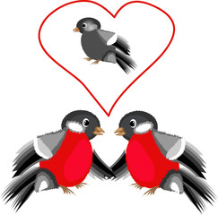 Bullfinches in the love