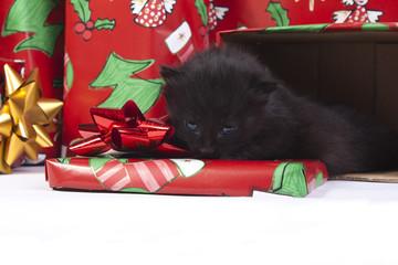 idea regalo natalizio