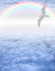 Wall Mural - High Resolution Bird in serene cloudscape