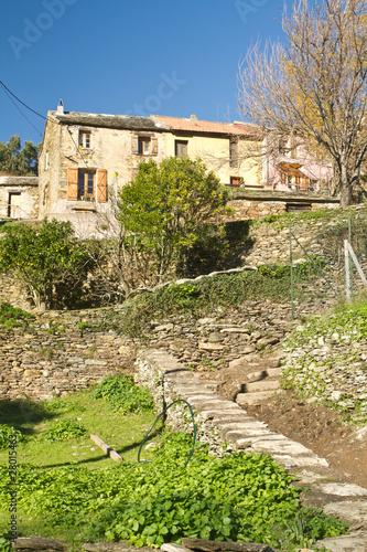 maison de village du cap corse pietracorbara photo