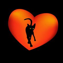 Black cat, red heart