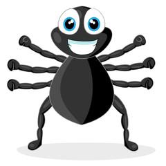 cute little spider