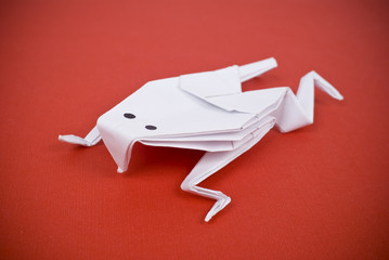 Frog out of paper on a red background