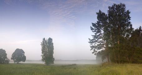 утренняя панорама с туманом