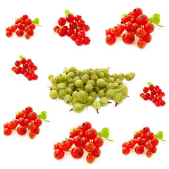 Berry collage, gooseberries and red currants