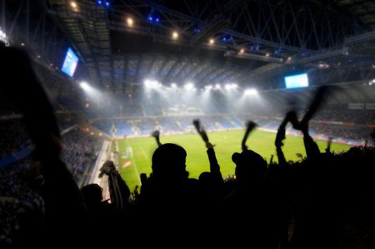 Fans celebrating a goal on football / soccer match