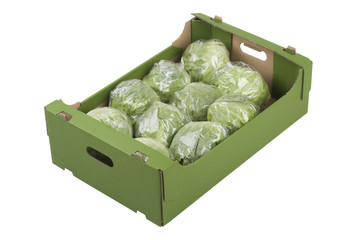 Box of Iceberg Lettuces
