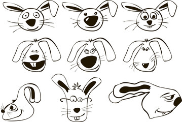 funny cartoon rabbits