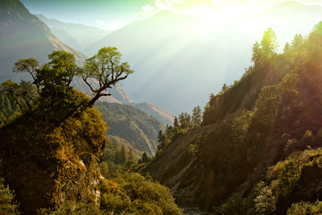 Garden Poster Deep brown enchanted mountain landscape, Nepal