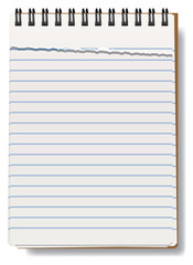 vector illustration of notepad with torn sheet