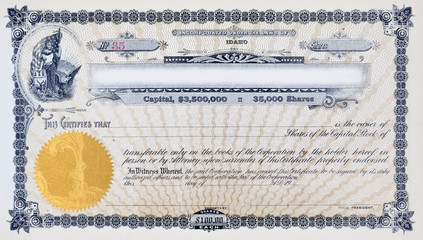 XL Vintage Stock Certificate Vignette Woman American Flag Moose