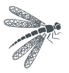 abstract tattoo -  insect dragonfly on white background