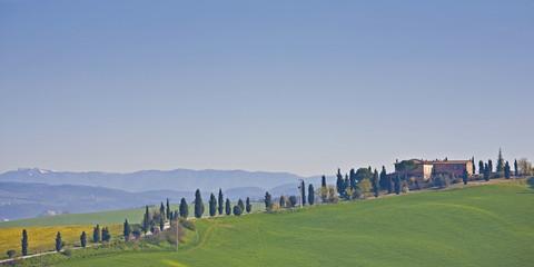 Foto op Canvas Toscane Landgut mit Zypressenallee