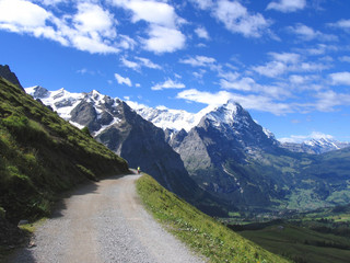 Swiss beauty, towards Schreckhorn above Grindenwald
