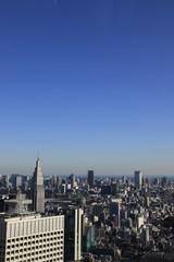 Fototapeta 東京遠景