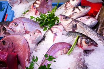 Mediterranean Fish Market